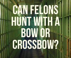 Can felons hunt with a bow or crossbow