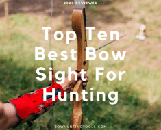 Top 10 Best Bow Sight For Hunting
