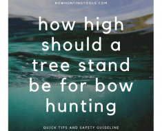 How high should a tree stand be for bow hunting