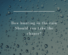 Bow hunting in the rain | Should you take the chance?